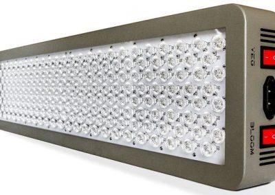 Advanced Platinum Series P600 Review – Top Choice!