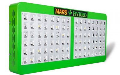 Marshydro Reflector Certificate Hydroponic Greenhouse Review