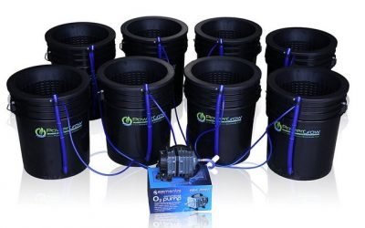 Deep Water Culture (DWC) Hydroponic Bucket Kit Review