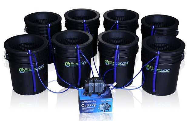 Deep Water Culture (DWC) Hydroponic Bubbler Bucket Kit