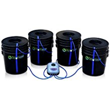 Deep Water Culture (DWC) Hydroponic Bubbler Bucket Kit by PowerGrow Systems (4) 5 Gallon - 6 inches Buckets