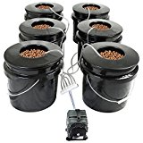 Best Hydroponic Grow Kit HTG Supply Bubble Brothers 6-Site DWC