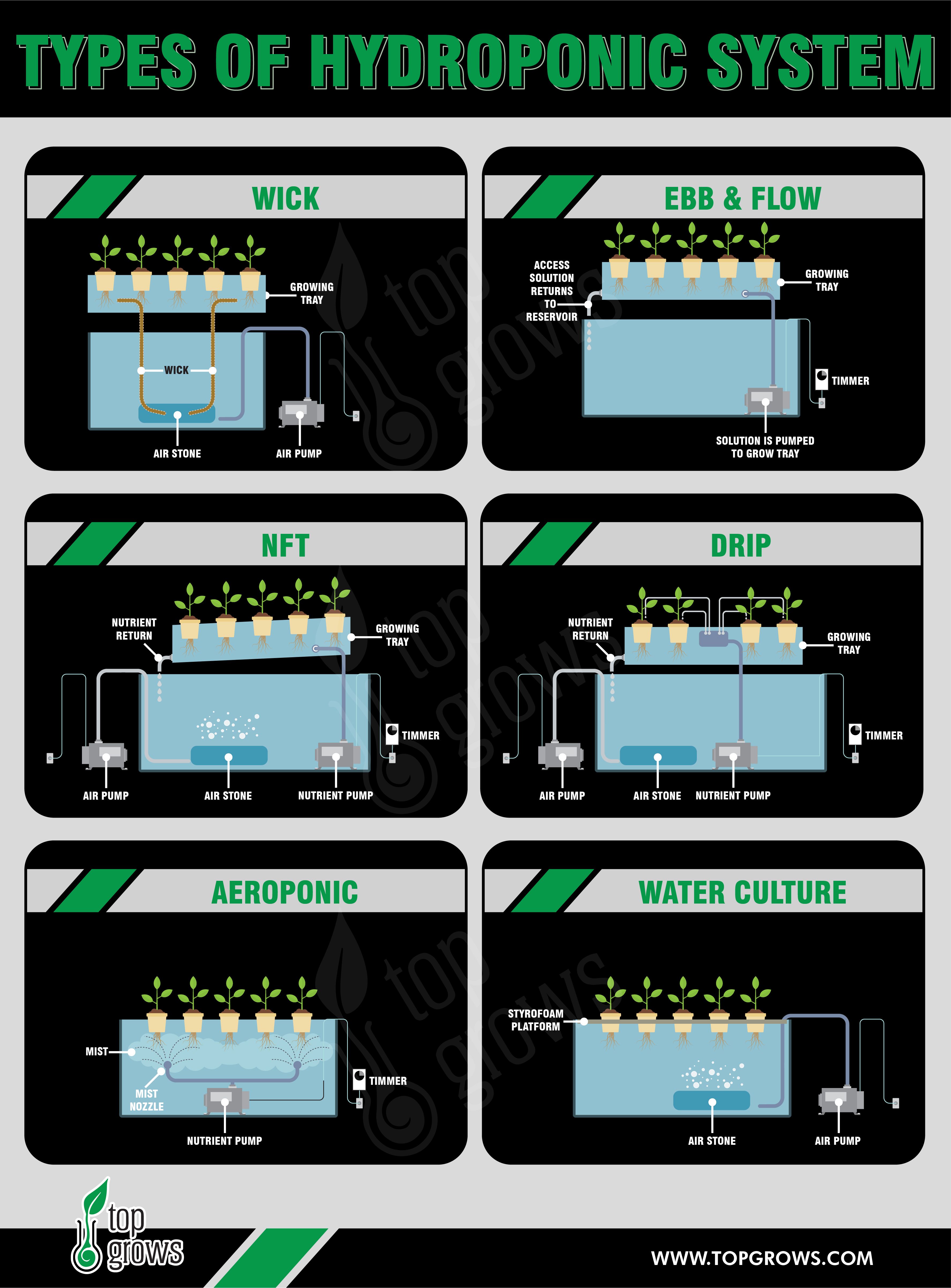 Main Types of Hydroponic Systems Infographic