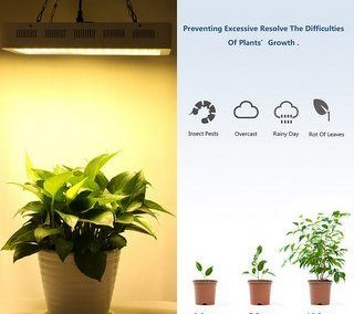 roleadro best indoor grow lights