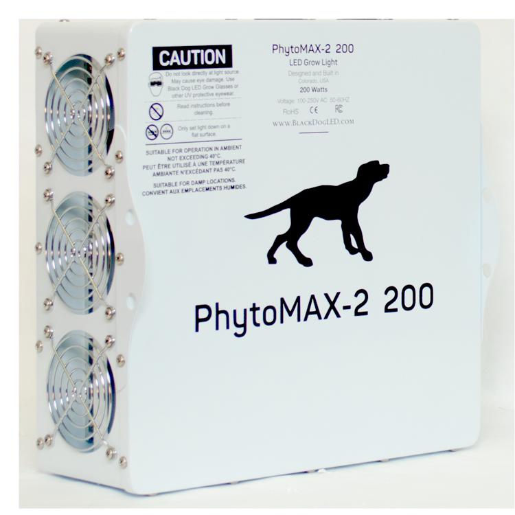 Black Dog Phytomax Review