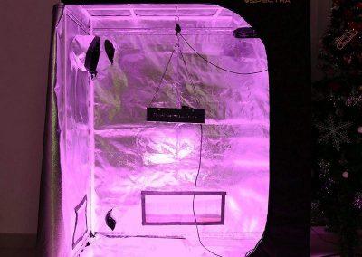 VIPARSPECTRA Reflective 600D Mylar, best Grow Tent
