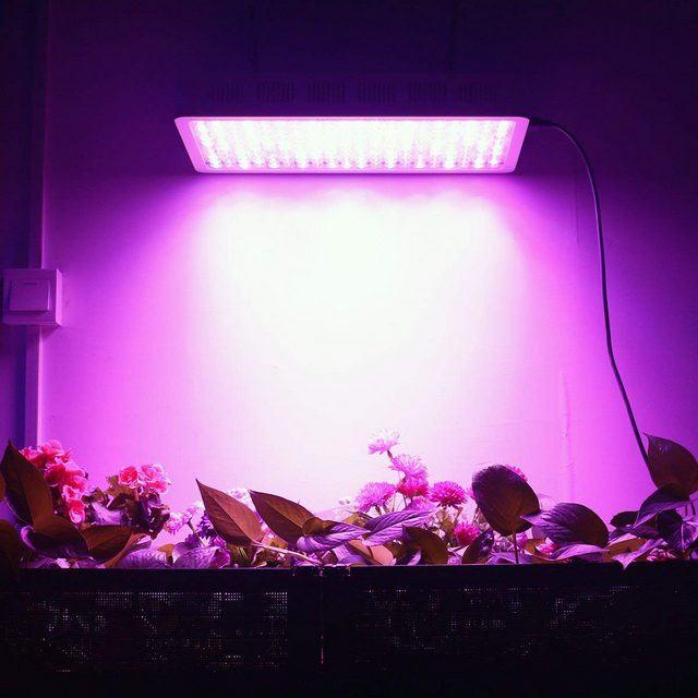 HIGROW Optical Lens-Series 1000W - Cheap LED Grow Light Review
