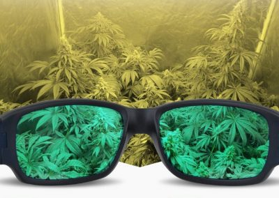 Top 6 Led Grow Glasses for HPS & MH Safety | Best Grow Room Glasses