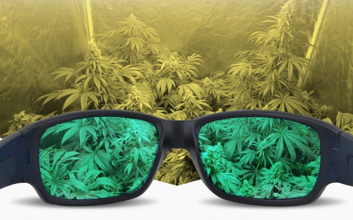 best grow light glasses