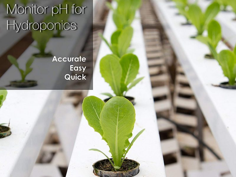 Best pH tester for hydroponics