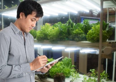 Make Your Plants Grow Faster with LED Grow Lights