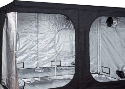 5 Best 10×10 Grow Tent Reviews for Indoor Growing | For a Great Yield