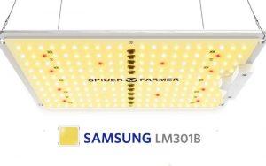 spider farmer lights