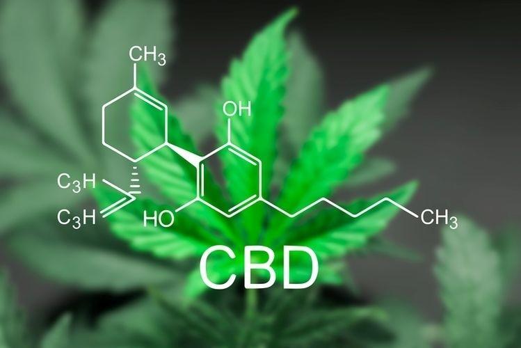 grow cannabis with grow lights