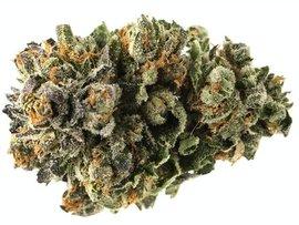 Bubba Kush weed strain