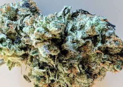 Best Hybrid Strains | Selection of the Most Enjoyable Hybrid Weed Strains