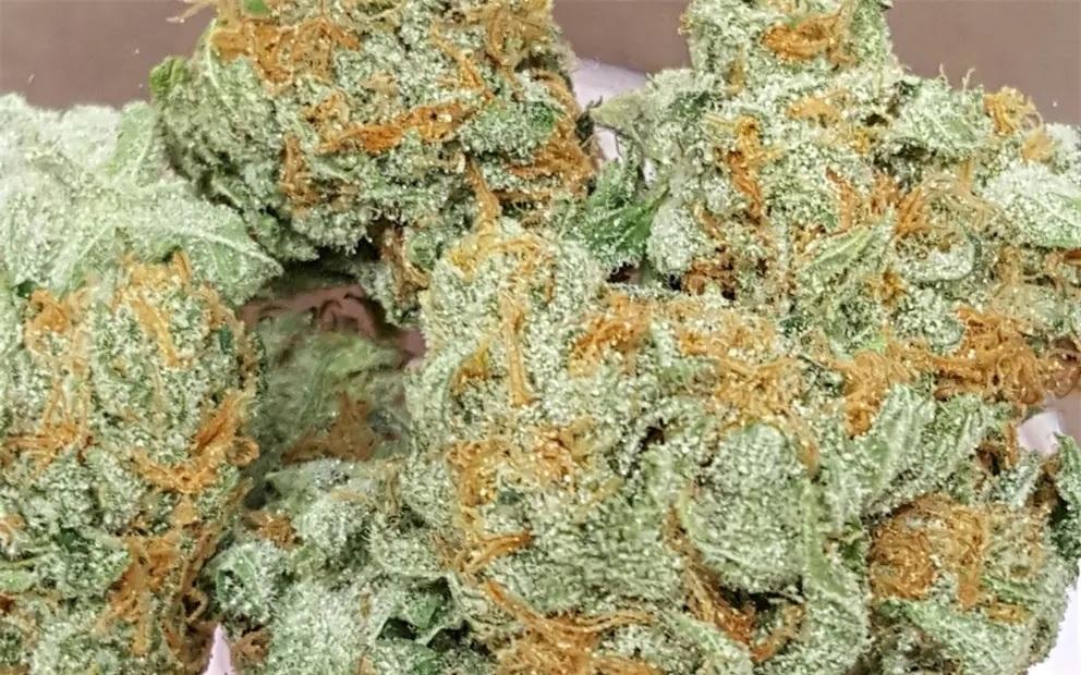 best indica strain