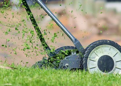 How to Get a Great Lawn | 8 Easy Tips to get that Dreamy Grass at Home