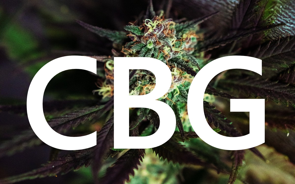 What Is CBG? All You Need to Know about Cannabigerol and its Benefits