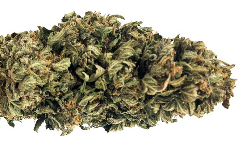 Best CBG Flower | High CBG Strains Buds you can Buy Online