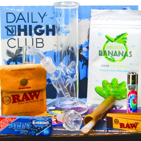 El primo box daily high club