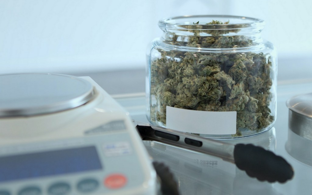 best scale for weed