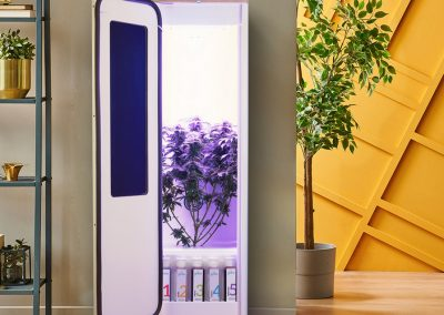 10 Best Stealth Grow Box | Top Grow Box for Beginners & Experts