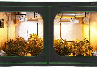9 Best Grow Tents for Indoor Growing | Reviews and Buyer's Guide