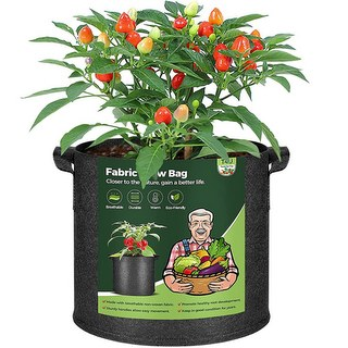 T4U Fabric Plant Grow Bags with Handles